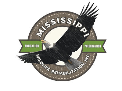 Mississippi Wildlife Rehabilitation Inc.