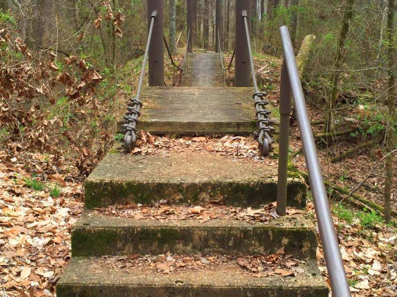 Swinging Bridge Trail Photo2
